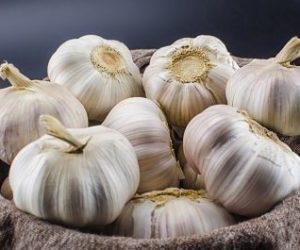 Garlic-Juice_opt