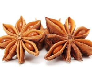 Star-anise_opt