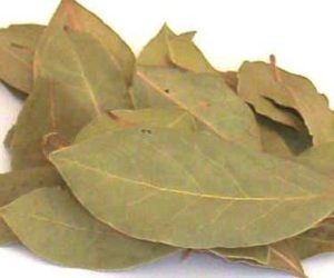 Dried-Bay-Leaves